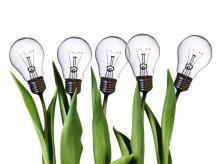 Una idea exitosa es una idea fresca